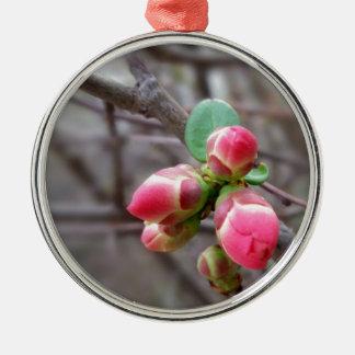 kleine rote Knospen Silbernes Ornament