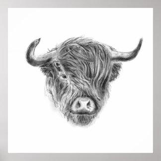 Kleine Straggly Hochland-Kuh Poster
