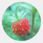 Kleine Walderdbeere Sticker
