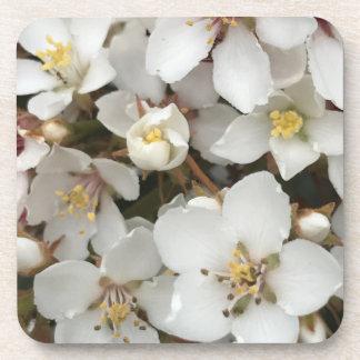 Kleine weiße Blumen Untersetzer