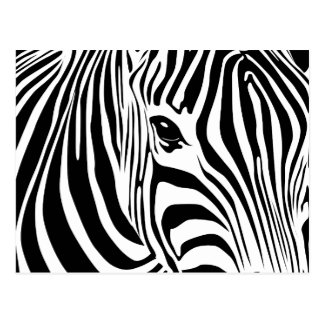 Kleine Zebra-Postkarte