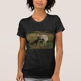 Kleiner grauer Esel mit Wildblumen T-Shirt