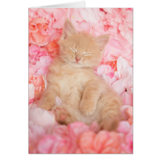 Kleiner Linus rosa leeres Mit Blumennotecard Karte