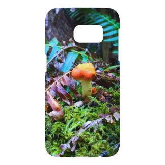 Kleiner orange wilder Pilz im Wald