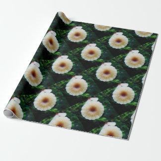 Kleiner Pilz Geschenkpapier