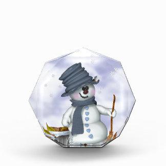 Kleiner Schneemann räumt auf Auszeichnung