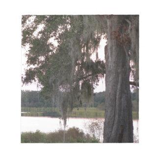 Kleiner See und Moos bedeckten Bäume Notizblock