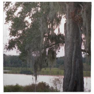 Kleiner See und Moos bedeckten Bäume Stoffserviette