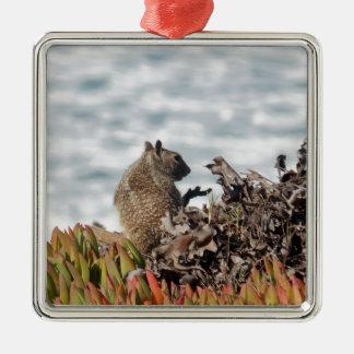 Kleines Eichhörnchen Quadratisches Silberfarbenes Ornament