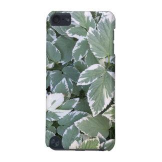 kleines Grün-Blätter mit weißen Rändern iPod Touch 5G Hülle