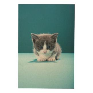 Kleines Kätzchen Holzwanddeko