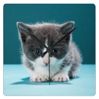 Kleines Kätzchen Quadratische Wanduhr