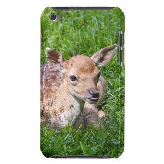Kleines Kitz im Gras, Baby-Tier iPod Case-Mate Hülle