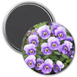 Kleines lila Stiefmütterchen Runder Magnet 7,6 Cm