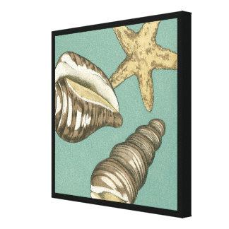 Kleines Muschel-Trio auf aquamarinem Leinwanddruck