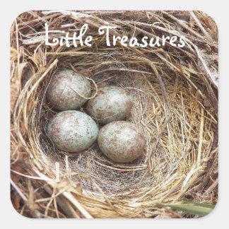 Kleines Schatz-Vogel-Notgroschen-Foto Quadratischer Aufkleber