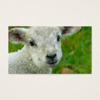 Kleines weißes Lamm Visitenkarte