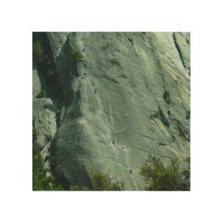 Kletterer auf EL Capitan Holzdruck