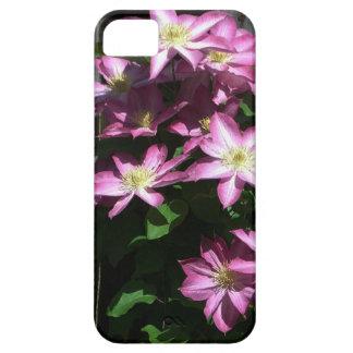 Kletternde Clematis-Frühlings-Blumen iPhone 5 Hülle