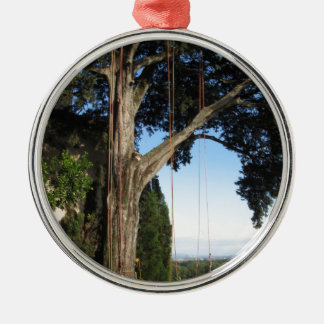 Kletternde Seile, die von einem großen Baum hängen Rundes Silberfarbenes Ornament