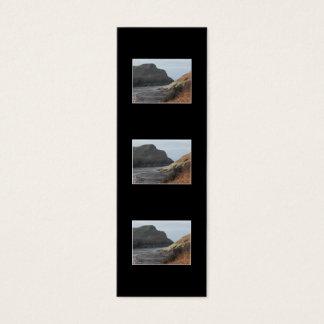 Klippen bei Watermouth, Devon, Großbritannien. Auf Mini Visitenkarte
