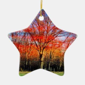 Kluger alter Baum Keramik Stern-Ornament