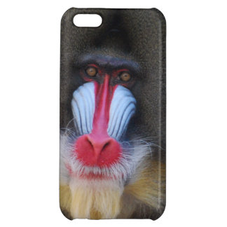 Kluger Mandrill Affe iPhone 5C Cover