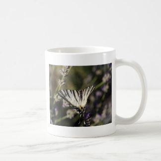 Knappes Frack (Iphiclides podalirius) Kaffeetasse