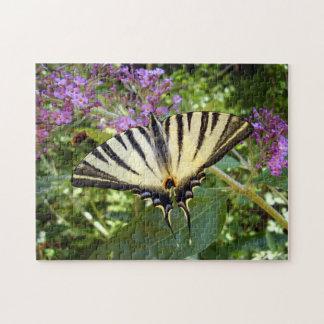 Knappes Frack-Schmetterlings-Foto-Puzzlespiel Puzzle