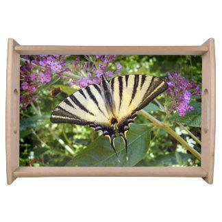 Knappes Frack-Schmetterlings-Serviertablett Serviertablett