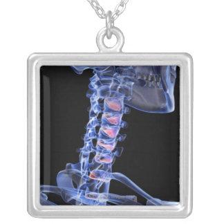 Knochen des Halses 3 Versilberte Kette