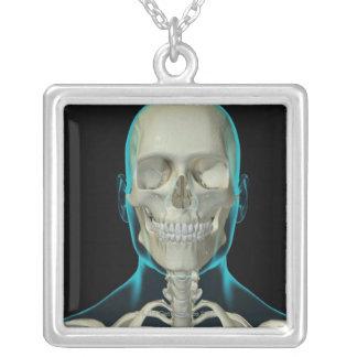 Knochen des Kopfes und des Halses 2 Versilberte Kette