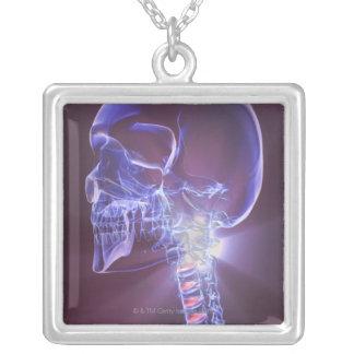 Knochen des Kopfes und des Halses 4 Versilberte Kette