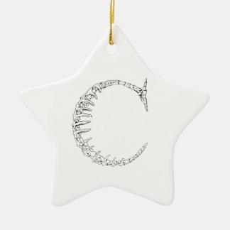 Knochen-Initiale des Buchstabe-C Keramik Stern-Ornament
