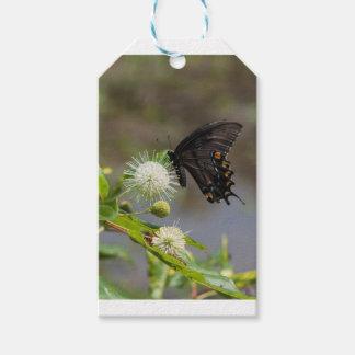 Knopf-Blume u. spicebush3 Geschenkanhänger