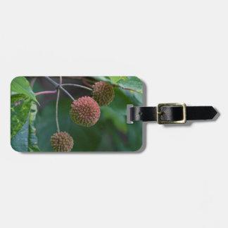 Knopf-Bush-Wildblume-Knospen Gepäckanhänger