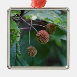 Knopf-Bush-Wildblume-Knospen Silbernes Ornament