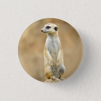 Knopf mit Meerkat auf Schutz Runder Button 2,5 Cm