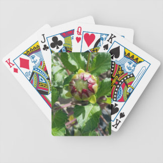 Knospe im Herbst Bicycle Spielkarten