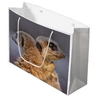Knuddelige Kats Geschenk-Tasche Große Geschenktüte
