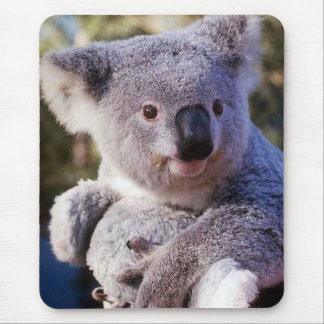 Koala-Bär, der einen Koala-Bären hält Mousepads