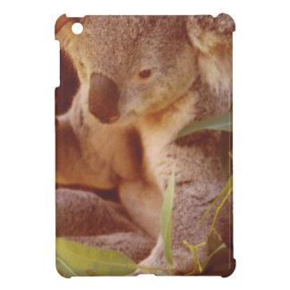 Koala-Bärn-Liebe iPad Mini Hülle