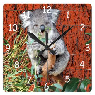 Koala-Imbiss-Zeit Quadratische Wanduhr