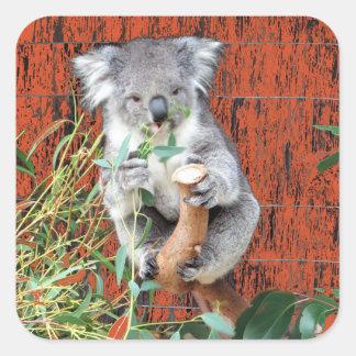 Koala-Imbiss-Zeit Quadratischer Aufkleber