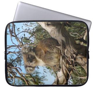 Koala in Australien Laptopschutzhülle