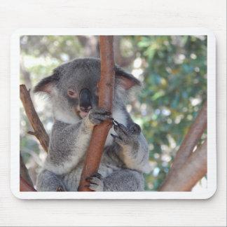 Koala.JPG Mousepads