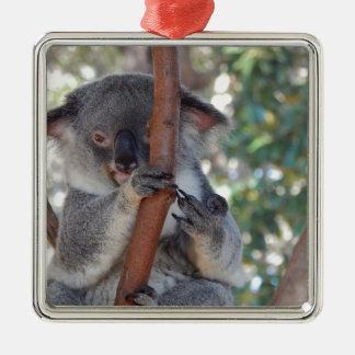 Koala.JPG Quadratisches Silberfarbenes Ornament