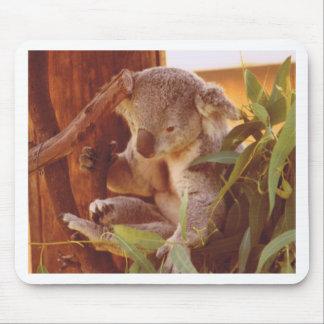 Koala-Liebe Mousepad