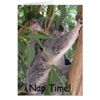 Koala Notecard Karte