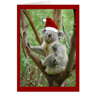Koala-Sankt-Weihnachtskarte Karte